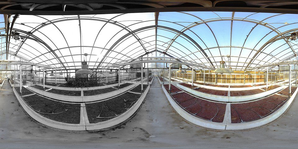 Abandoned Greenhouse / B&W vs Color - Pau - FRANCE