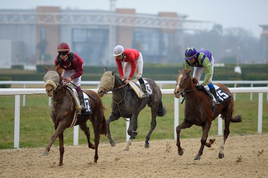 Horse Racing - Racecourse Angers / Ecouflant - Photo finish, France