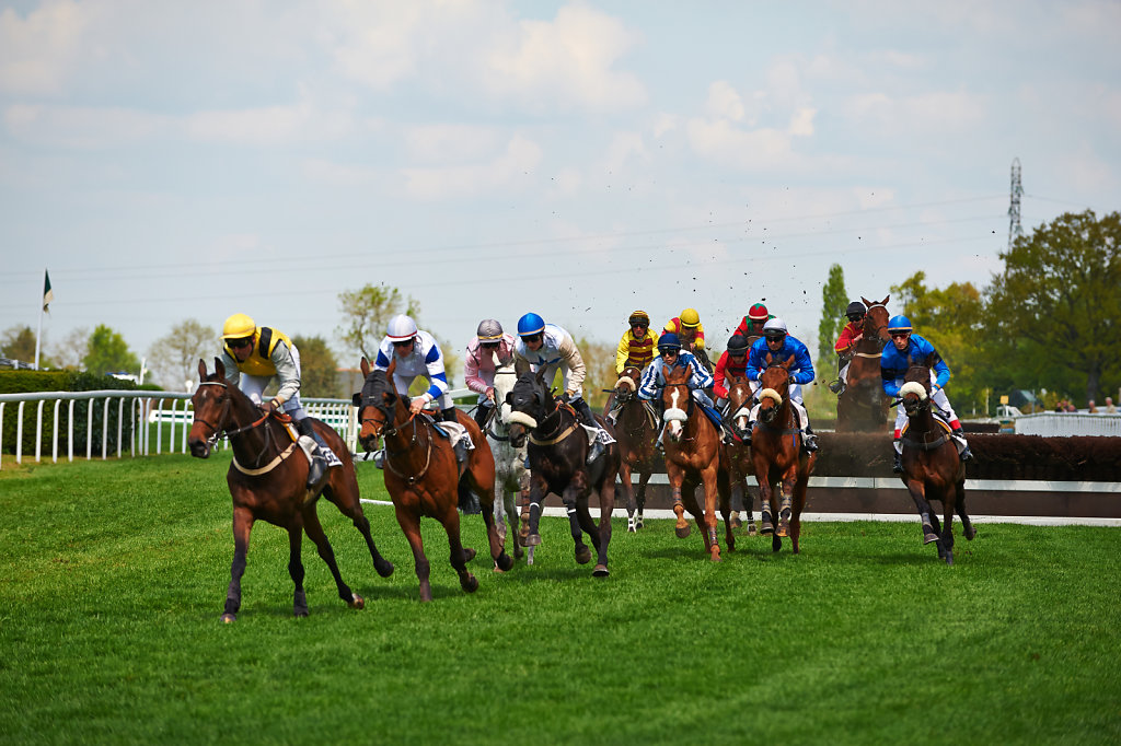 Horse Racing - Racecourse Angers / Ecouflant, France